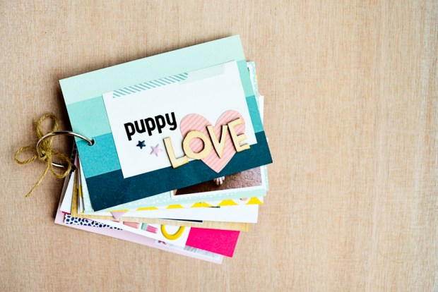 puppy-love-mini-3