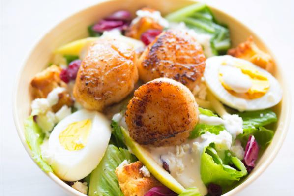 Seared Scallops And Fresh Garden Salad