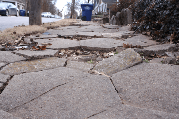Damaged sidewalk, Atlanta's Candler Park neighborhood. Photo by author.