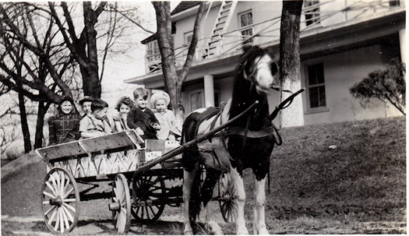During the 1950s the Alexander School and Camp offered pony rides. Photo courtesy of Kaye Giuliani.