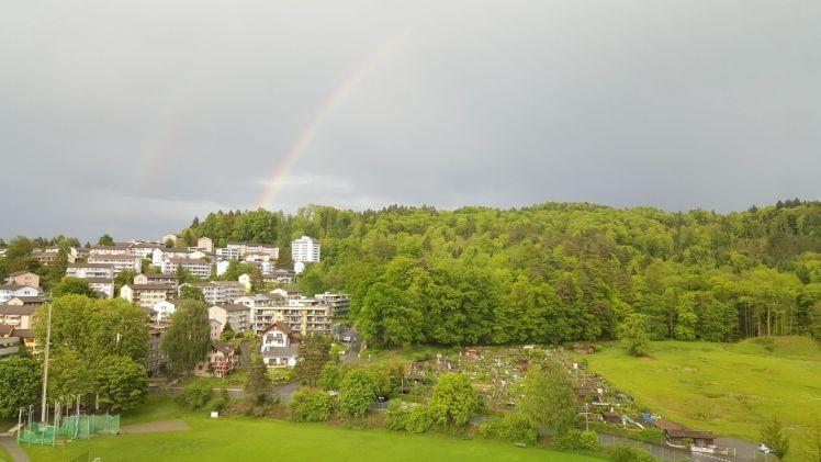 Bireggwald
