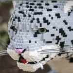 Nature Connects, Art With Lego Animals Returning to Denver Zoo