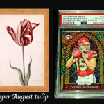 What do Tulips, Beanie Babies and Trading Cards have in Common?