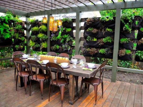 vertical garden in backyard