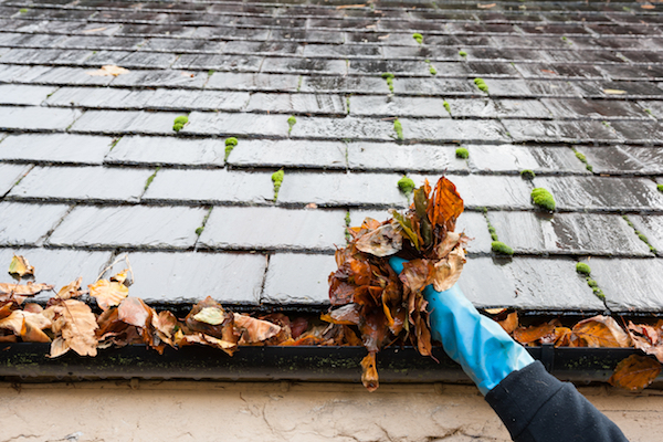 fall projects highest roi gutter cleaning