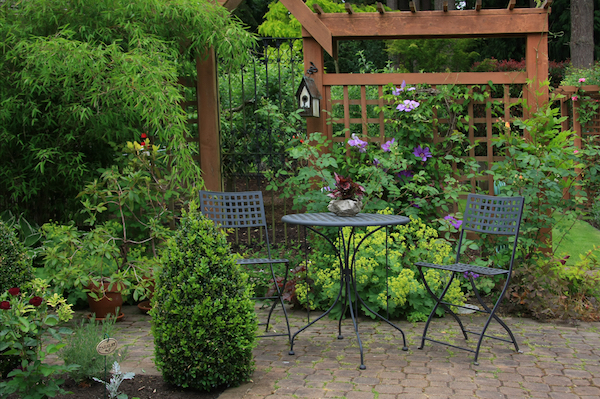 increase home's privacy install a trellis
