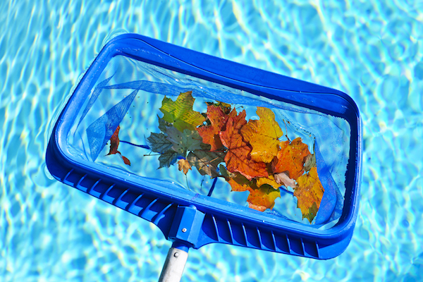 skimmer head pool supplies