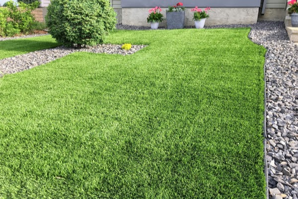 backyard with artificial grass