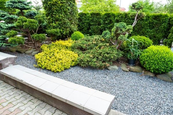 gravel yard with landscaping