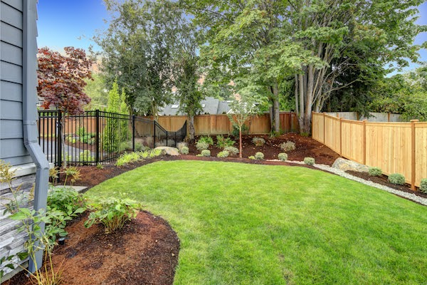 backyard garden with slope