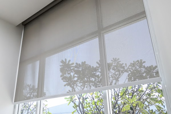 rolled blinds in front of window