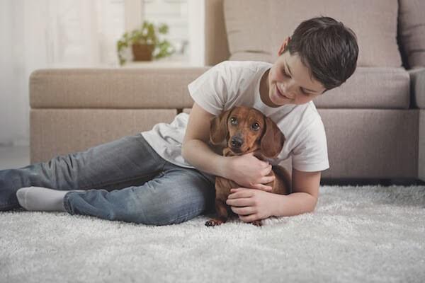 boy holds dog on basement carpet