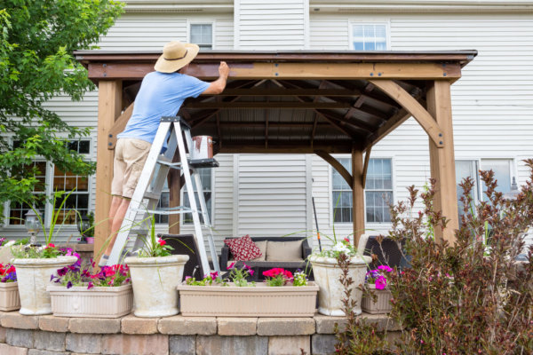 Man staining a backyard wooden gazebo behind his house standing on a ladder viewed over flowerpots on a wall on the patio