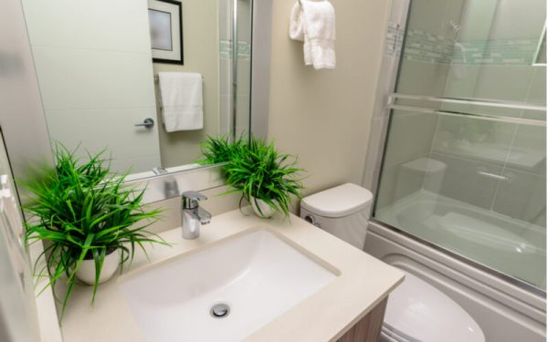 Interior design of a luxury bathroom, washroom with washbasin (sink) and decorative pots with plants on the counter.