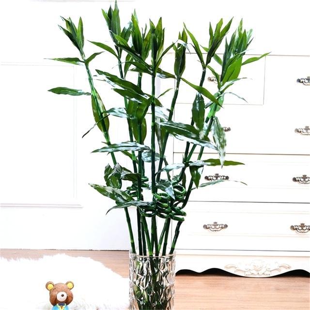 Artificial Bamboo
