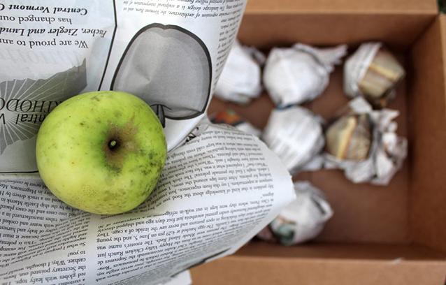 Storing Apples In Autumn