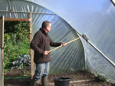 Man cleaning a polytunnel in his garden in November.