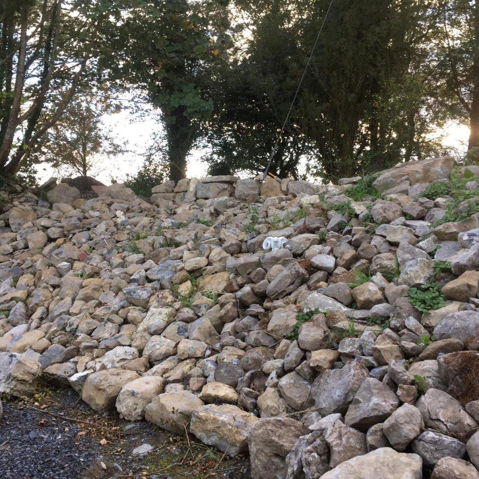 Horkans Garden Building a rockery