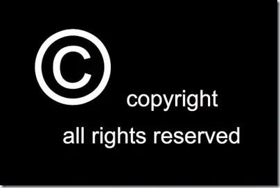 domain copyright