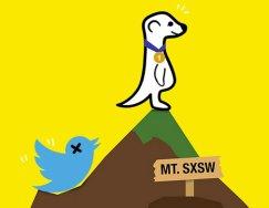 competencia de twitter meerkat