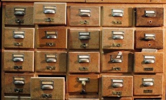 taxonomias en wordpress