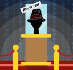 Sombrero negro, Tipos de Hacker