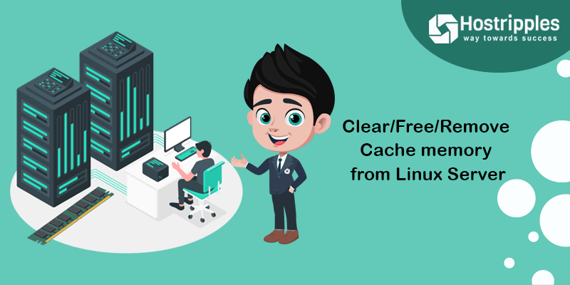 Clear/Free/Remove Cache memory from Linux Server, Hostripples Web Hosting