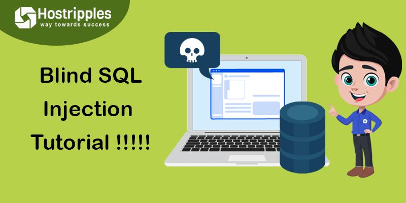 Blind SQL Injection Tutorial !!!!!, Hostripples Web Hosting