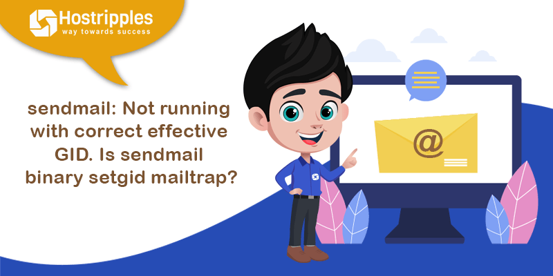sendmail: Not running with correct effective GID.  Is sendmail binary setgid mailtrap?, Hostripples Web Hosting