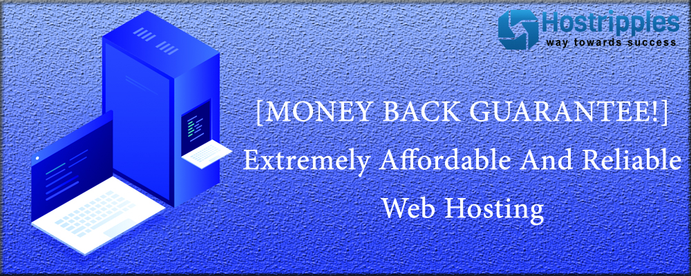 , [MONEY BACK GUARANTEE!] Extremely Affordable And Reliable Webhosting @Hostripples!, Hostripples Web Hosting