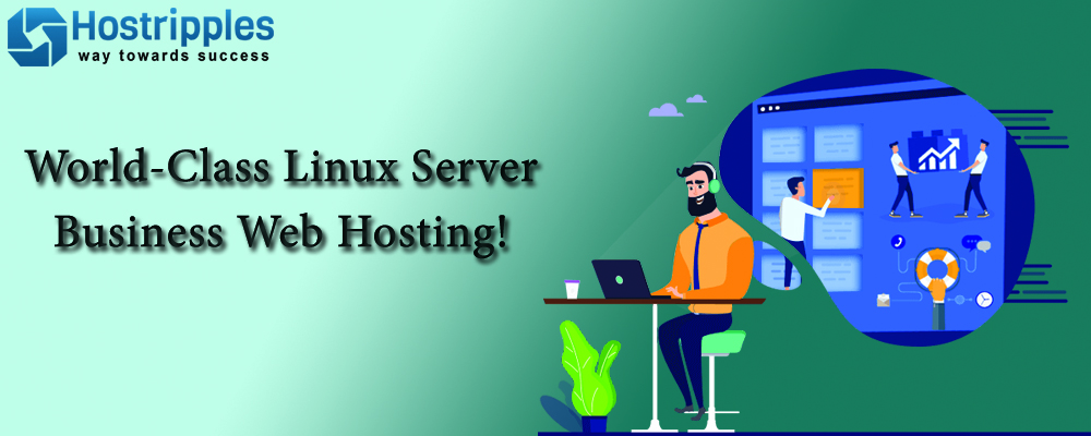 Woeld-class_Linux_Server_Business_Hosting