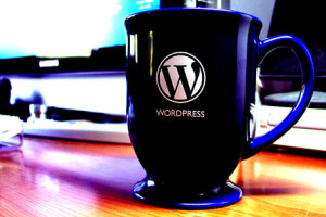 , How to Change Theme Without Login To WordPress Admin Area !!!, Hostripples Web Hosting