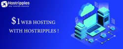 , Shared Hosting | $ 1 /Month | 99.9 % Uptime @ HOSTRIPPLES!, Hostripples Web Hosting