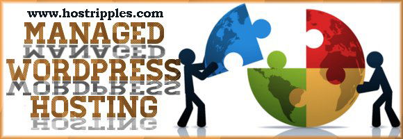 Managed WordPress Hosting, The Advantages Of Managed WordPress Hosting, Hostripples Web Hosting