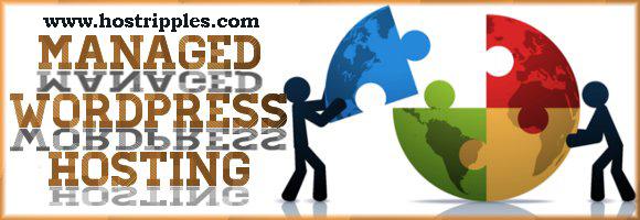 The Advantages Of Managed WordPress Hosting, Hostripples Web Hosting