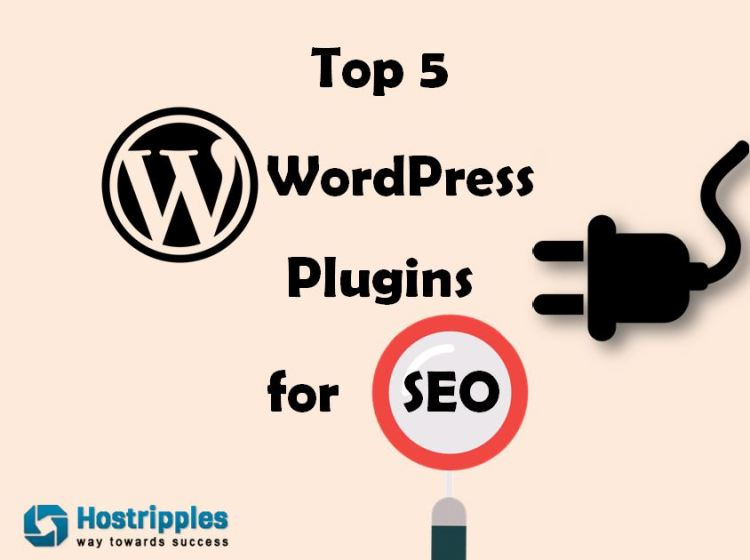 WordPress plugins, Top 5 WordPress Plugins for SEO 2017, Hostripples Web Hosting