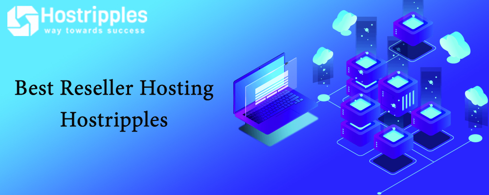 Best Reseller Hosting, Best Reseller Hosting 2021 For Web Designer & Developers in India, Hostripples Web Hosting