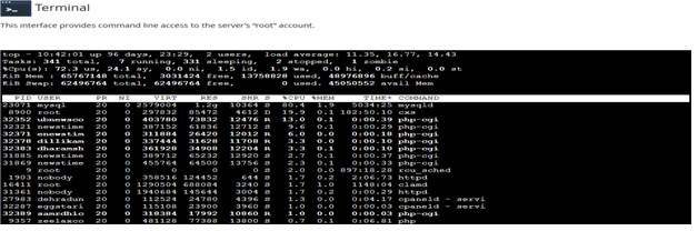 Accessing Terminal Interface in WHM, Hostripples Web Hosting