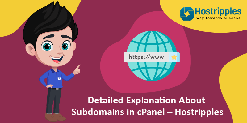 Detailed Explanation About Subdomains in cPanel – Hostripples, Hostripples Web Hosting