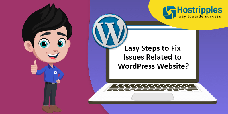 Easy Steps to Fix Issues Related to WordPress Website?, Hostripples Web Hosting