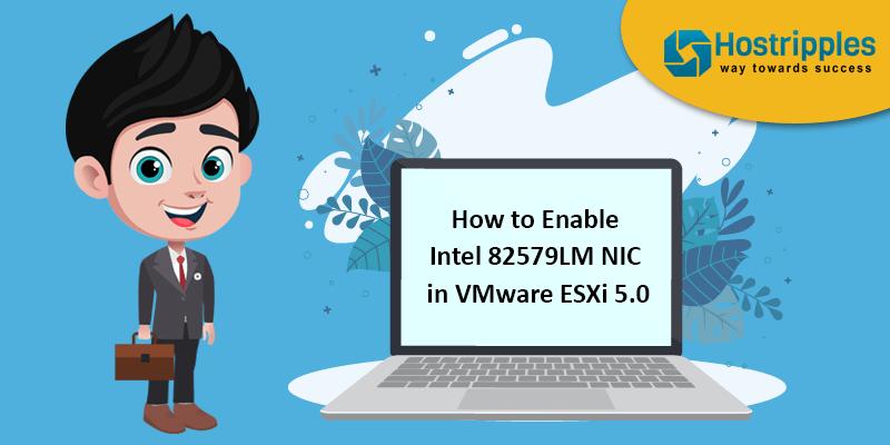How to Enable Intel 82579LM NIC in VMware ESXi 5.0, Hostripples Web Hosting