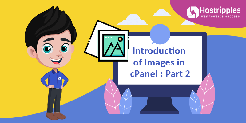 Introduction of Images in cPanel : Part 2, Hostripples Web Hosting
