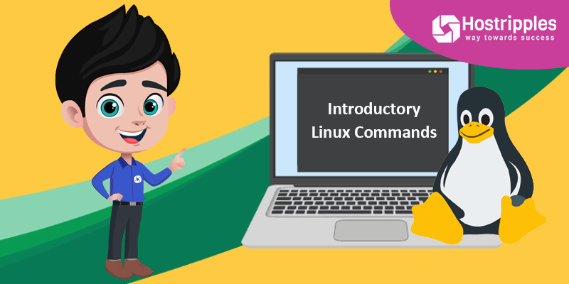 Introductory Linux Commands, Hostripples Web Hosting