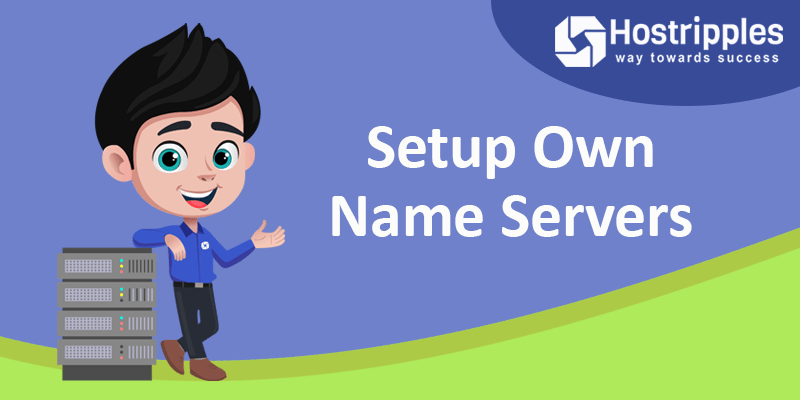Set up own Name Servers, How to set up own Name Servers in Vesta Control Panel, Hostripples Web Hosting