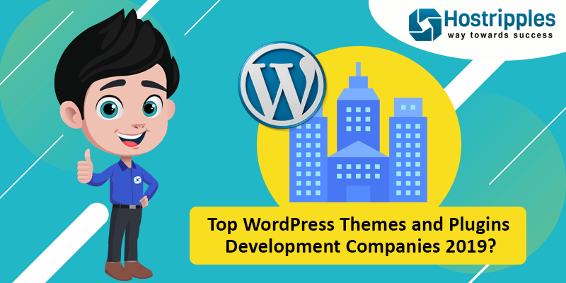 Top WordPress Themes and Plugins Development Companies 2019?, Hostripples Web Hosting