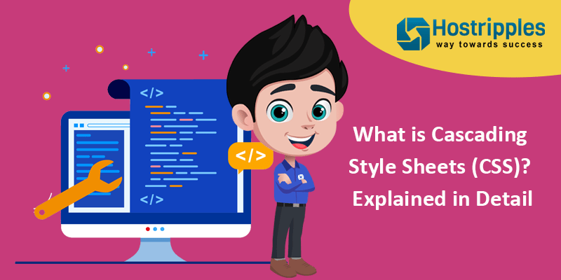 What is Cascading Style Sheets (CSS)? Explained in Detail, Hostripples Web Hosting
