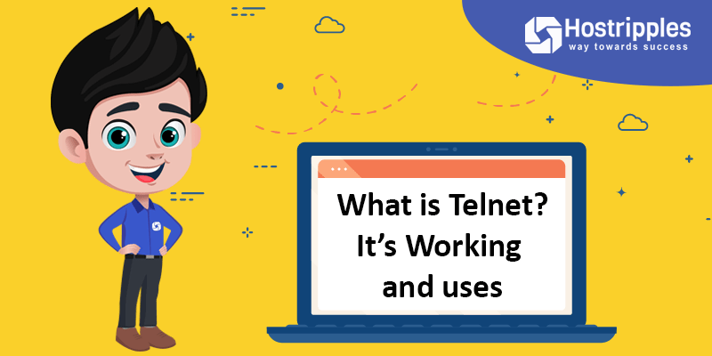 What is Telnet? It's Working and uses, Hostripples Web Hosting