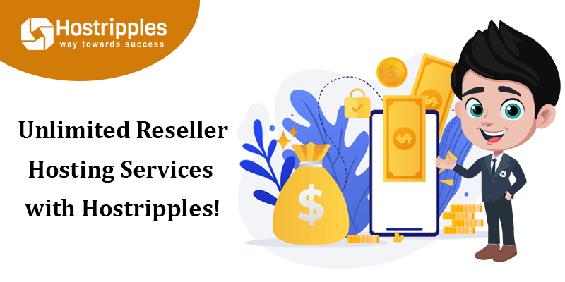Unlimited Reseller Hosting Services with Hostripples!, Hostripples Web Hosting