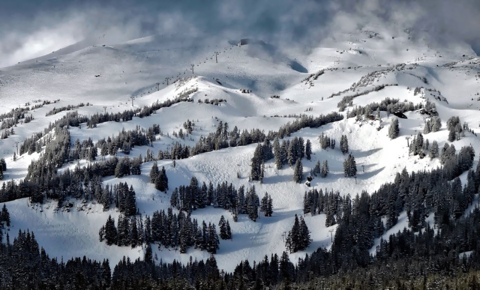 snow and trees covering mountain in Mt. Hood, Oregon