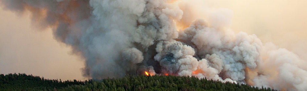 Support the British Columbia Fires Appeal
